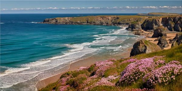 Spring Wildflowers Bedruthan Steps - Canvas Print