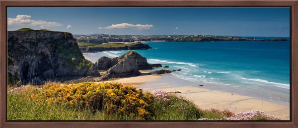 View to Newquay over wildflowers on the clifftops above Porth beach