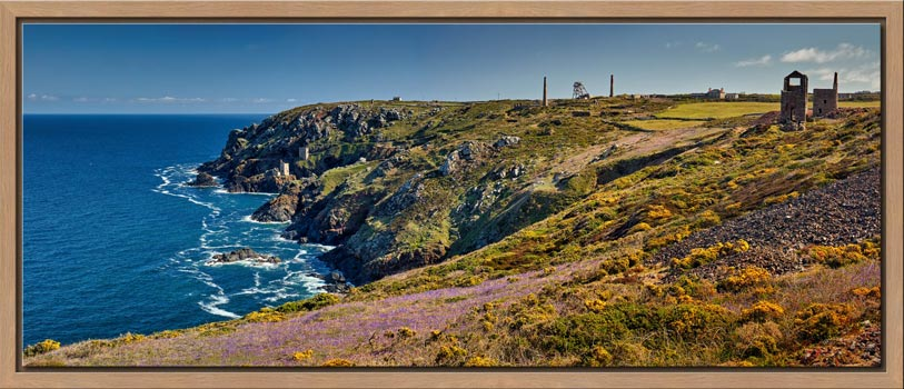The wildflowers and mine ruins at Botallack on the Cornish coast