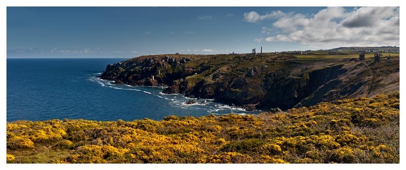 Botallack Mines Yellow Gorse - Cornwall Print