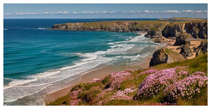 Spring Wildflowers Bedruthan Steps - Cornwall Print